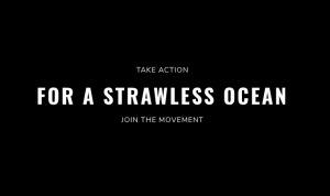 strawless-ocean